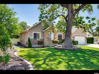 Pleasant Grove Single Family Home Under Contract: 135 S 300 E