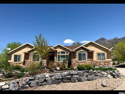 Cedar Hills Single Family Home For Sale: 3856 W Mountaintop Cir N