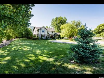 Nibley Single Family Home For Sale: 5263 Hollow Rd