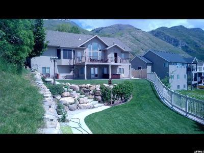 Provo Single Family Home For Sale: 4667 N Hillside Dr