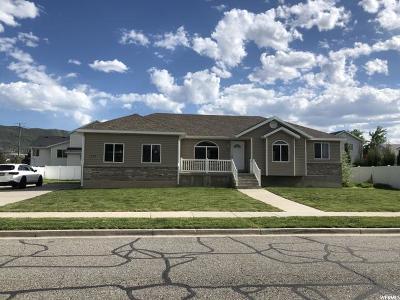 Draper Single Family Home For Sale: 271 W 13130 S