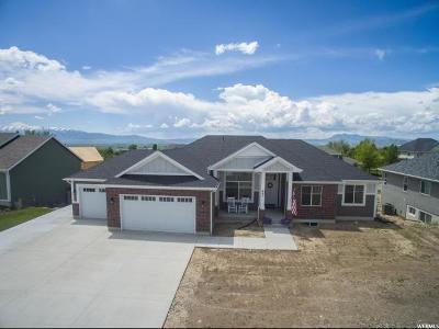 Smithfield Single Family Home For Sale: 261 S 890 E