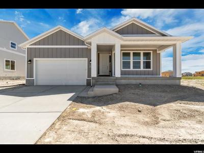 Stansbury Park Single Family Home For Sale: 313 W Buckskin Ln #511