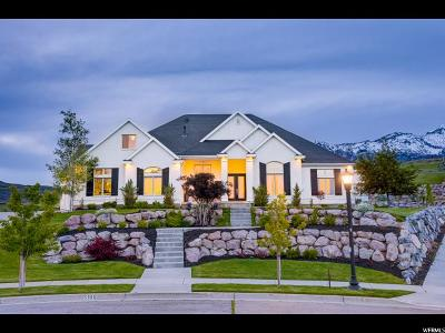 Highland Single Family Home For Sale: 5886 W Timber Ridge Ln