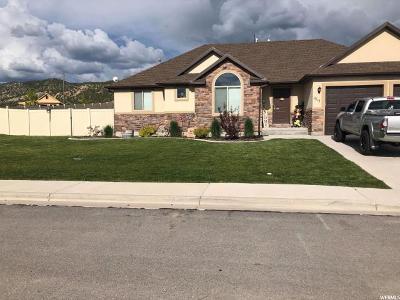 Nephi Single Family Home For Sale: 1317 S 230 E