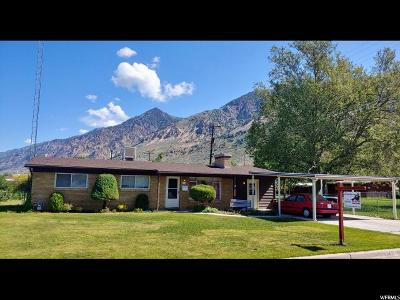 Brigham City Single Family Home Under Contract: 419 E 600 N