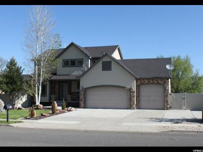 Wasatch County Single Family Home For Sale: 685 E 200 S