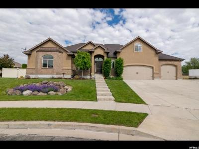 South Jordan Single Family Home Under Contract: 1388 W Carriage View Ct S