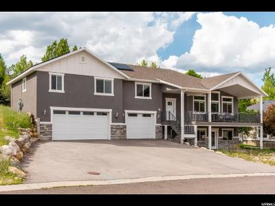 Wasatch County Single Family Home Under Contract: 731 Ridge Dr