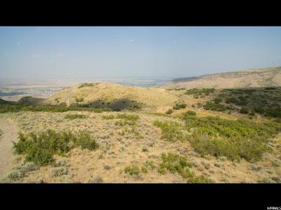 Herriman Residential Lots & Land For Sale: 15633 S High Step Ln