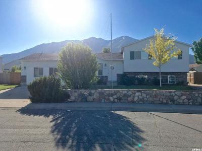 Spanish Fork Single Family Home For Sale: 1503 S 2850 E