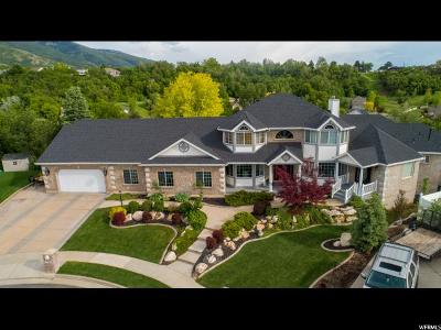 Layton Single Family Home For Sale: 2160 Country Oaks Dr