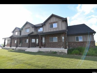 Tremonton Single Family Home For Sale: 7280 W 9600 N