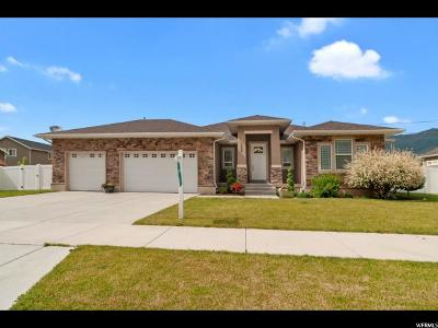 South Weber Single Family Home For Sale: 1224 Canyon Dr