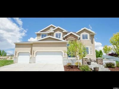 Wasatch County Single Family Home Under Contract: 324 Waterside Rd