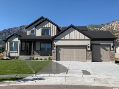 Weber County Single Family Home For Sale: 1192 E 2775 N