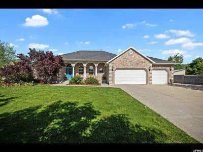 Draper Single Family Home For Sale: 13157 S 1065 E