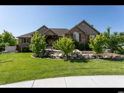 Davis County Single Family Home For Sale: 471 N Stallion Cir W