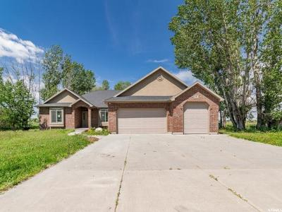 Weber County Single Family Home For Sale: 625 S 1200 W