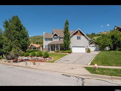 Davis County Single Family Home For Sale: 1367 E Skyline Dr