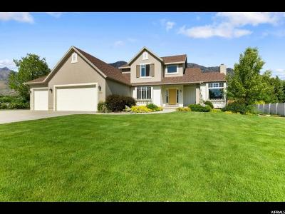 Pleasant Grove Single Family Home For Sale: 3688 N 1270 W