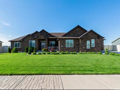 Tooele County Single Family Home For Sale: 585 E Coach Ln