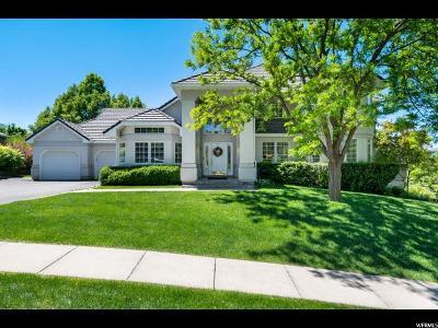 Providence Single Family Home For Sale: 315 Stonehenge Dr
