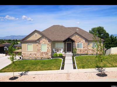 Springville Single Family Home For Sale: 538 S 2000 E