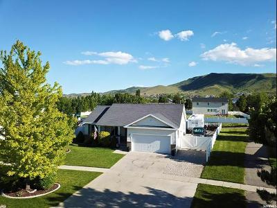 Herriman Single Family Home For Sale: 6013 W Olympiad Ln S