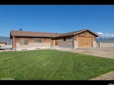 Grantsville UT Single Family Home Backup: $399,000