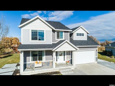 Wellsville Single Family Home For Sale: 873 E 675 St N