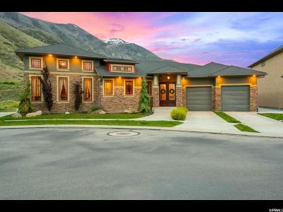 Cedar Hills Single Family Home For Sale: 10808 N La Costa W