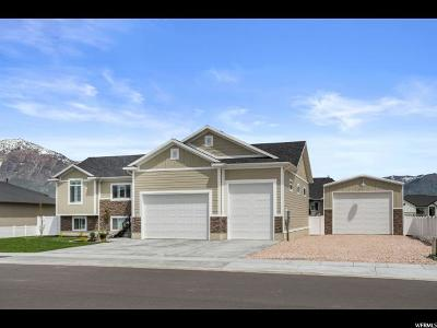 Weber County Single Family Home Under Contract: 2474 N 2825 W