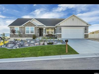Eagle Mountain Single Family Home For Sale: 9931 N Outlook Way