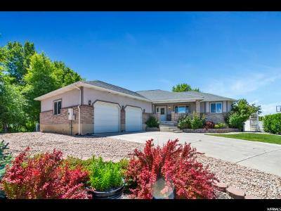 Payson Single Family Home For Sale: 1455 S 600 W