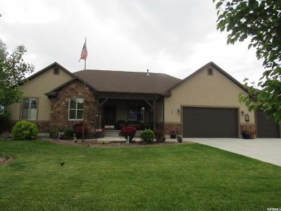 Eagle Mountain Single Family Home For Sale: 8780 N Gooseberry