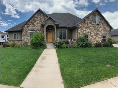 Salem Single Family Home For Sale: 388 S 860 E