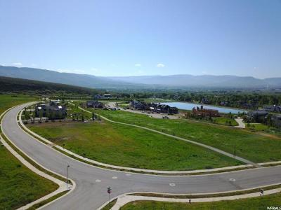 Wasatch County Residential Lots & Land For Sale: 542 E Dutch Mountain Dr