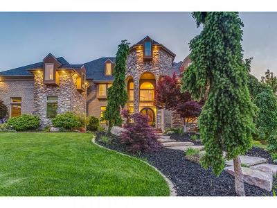 Draper Single Family Home For Sale: 14182 Canyon Vine Cv