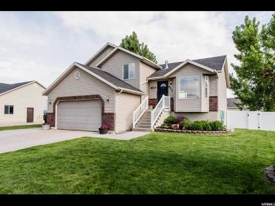 Nibley Single Family Home For Sale: 917 W 2575 S