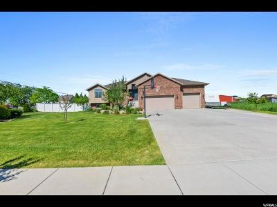 Weber County Single Family Home For Sale: 2611 N 3375 W