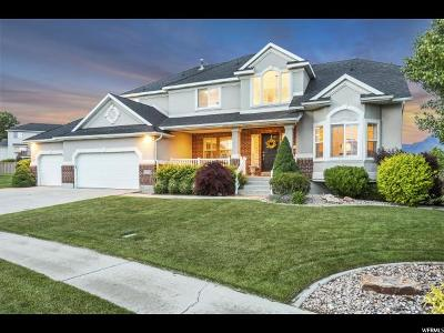 Lehi Single Family Home For Sale: 2290 N Carter Rd