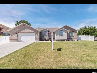 South Jordan Single Family Home For Sale: 2718 W Southpointe Rd S