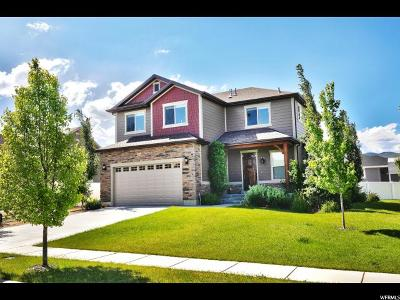 Wasatch County Single Family Home For Sale: 980 E 650 S