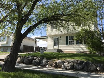 Tremonton Single Family Home For Sale: 463 W 800 S