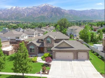 Weber County Single Family Home For Sale: 1094 W Mount Orchard Dr