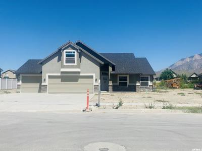 Weber County Single Family Home For Sale: 2786 W 3375 N