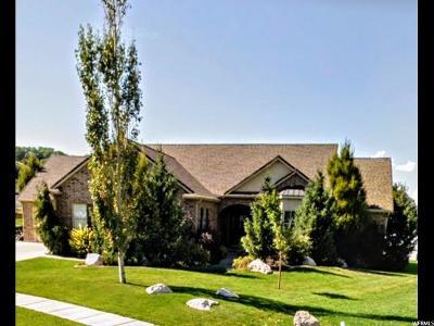 South Weber Single Family Home For Sale: 7853 S 1960 E