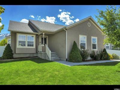 Spanish Fork Single Family Home For Sale: 1033 S 1700 E