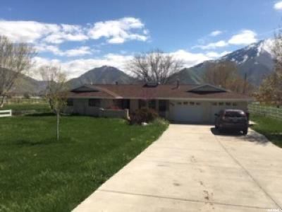 Mapleton Single Family Home For Sale: 775 S 1600 W